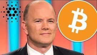 Novogratz Hints At Return Of Bitcoin! + Cardano (ADA) Bullrun Potential