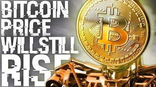 """Bitcoin Price Will Recover"" - Bitcoin Expert Speaks Out Against Bears"