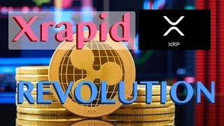 xRapid Will Bring Revolution - Ripple's XRP Close To Bitcoin's Transaction Dominance