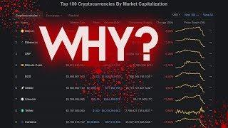 Bitcoin Flash Crash Explained! *Summary*