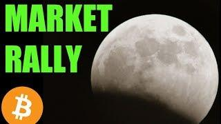 Crypto Market RALLY - Daily Bitcoin and Cryptocurrency News