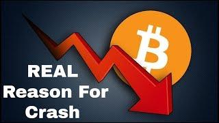 The REAL Reason Bitcoin Crashed! | Institutional Money Already Here?