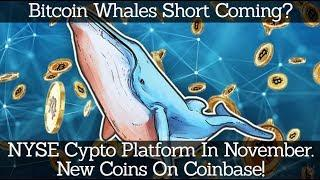 Crypto News | Bitcoin Whales Short Coming? NYSE Cypto Platform In November. New Coins On Coinbase!