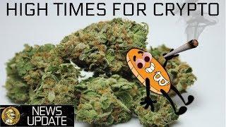 Cannabis Stocks Light Up & Starbucks Embraces Bitcoin - BTC & Crypto News