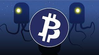 Bitcoin Private - The Privacy Bitcoin Fork (Bitcoin Private Future Plans)