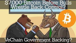 Crypto News | $7,000 Bitcoin Before Bulls Wrestle Back Control? VeChain Government Backing?
