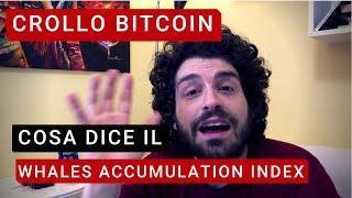 CROLLO bitcoin e cripto cosa dice il WAI!