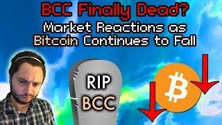 Don't PANIC About Crypto! Bitcoin | Ethereum Falls Below $300 | BCC Considered Dead