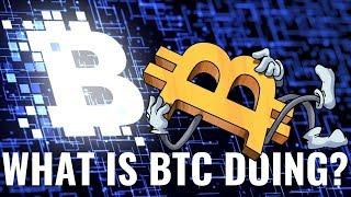 What is Bitcoin Doing??