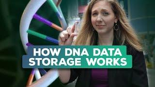Is synthetic DNA the future of data storage? (Bridget Breaks It Down)