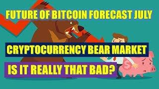 Future of Bitcoin Forecast July --The Official Cryptocurrency Bear Market, Is It Really That Bad?
