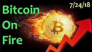 BITCOIN ON FIRE - Daily Bitcoin and Cryptocurrency News 7/24/2018