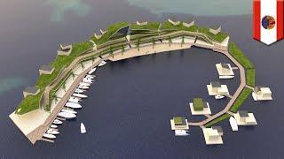 Proyek pulau mengapung menjanjikan pemerintahan sendiri, cryptocurrency - TomoNews