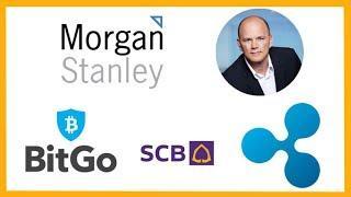 Morgan Stanley Bitcoin Swap Trading - Mike Novogratz Crypto - BitGo Custody - Siam Bank xRapid