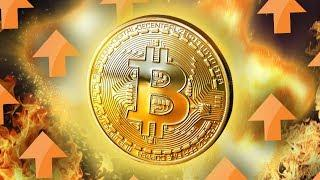 Bitcoin's Crash Is Over - Here's Why