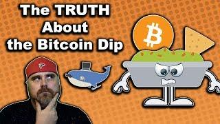 The TRUTH Behind the Bitcoin Dip